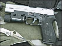 sigarms2.jpg