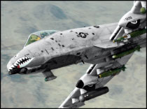 warthog2.jpg