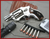 smith-wesson2.jpg