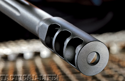 savage-arms-110-fcp-338-lapua-mag-c1
