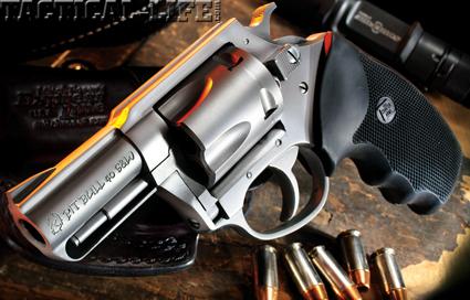 charter-arms-pitbull-40-sw-b