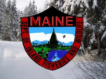 Varmint exterminator meet the vex ss from windham weaponry for Maine fish wildlife