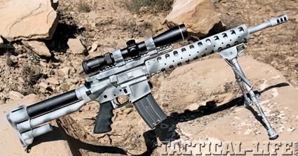 dl-sports-perimeter-carbine-556mm-b