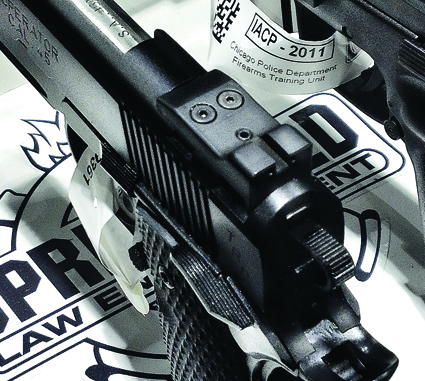 icap-10-springfield-armony-dual-dovetail-sight