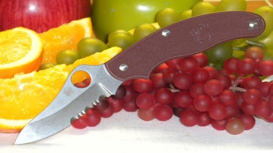 Spyderco UK Penknife Lightweight Drop-Point