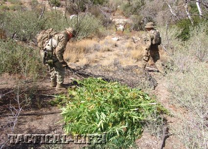 LA County Marijuana Eradication Team
