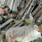 AR Hunting Strategies Stabilize