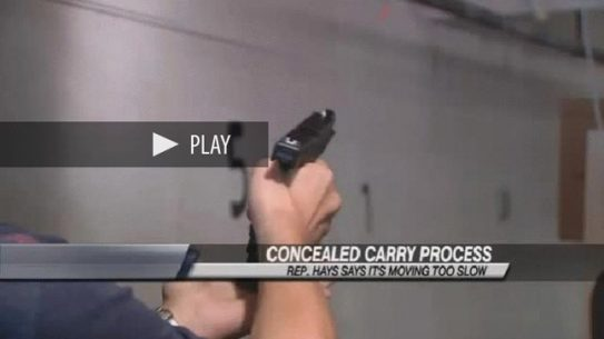Illinois CCW Rollout Bogged Down by Red Tape