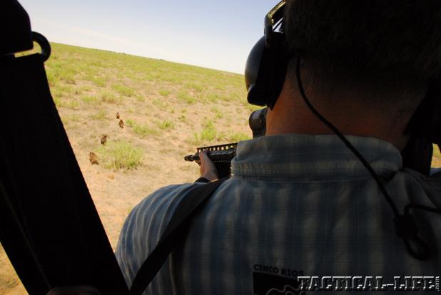 LaRue Tactical PredatAR OBR Hog Hunting