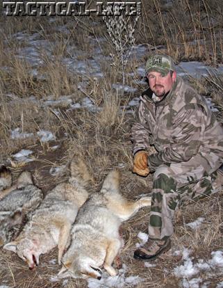 Predator Hunting Hornady Coyotes