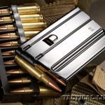 STAG ARMS model 7 bullets