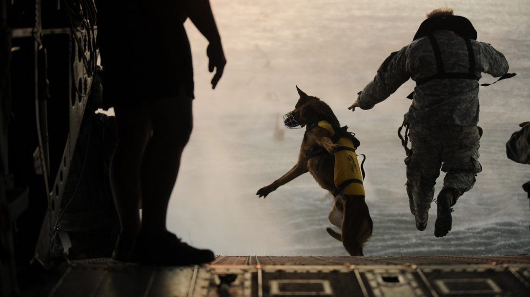 The new U.S. Military Working Dog Teams National Monument will be dedicated at Joint Base San Antonio-Lackland, home of the world's largest training center for military and security canines and their handlers.