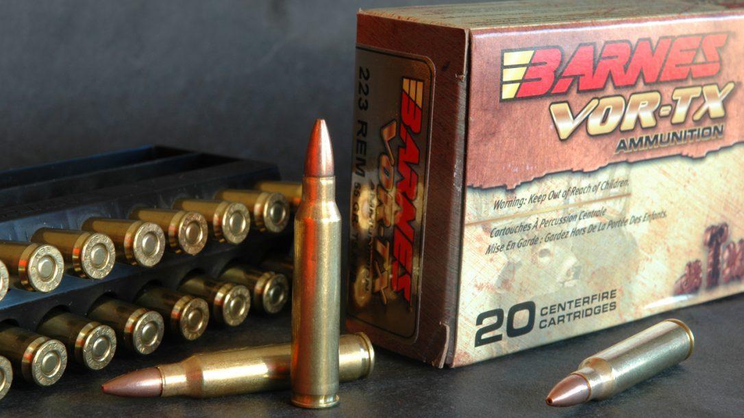 NASGW- New Ammunition -Barnes