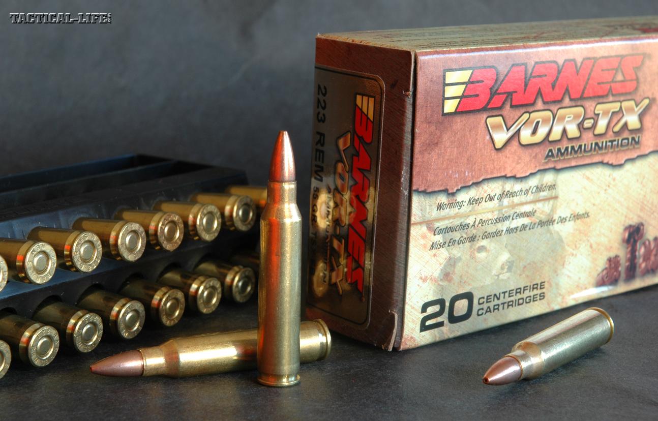NASGW- New Ammo -Barnes
