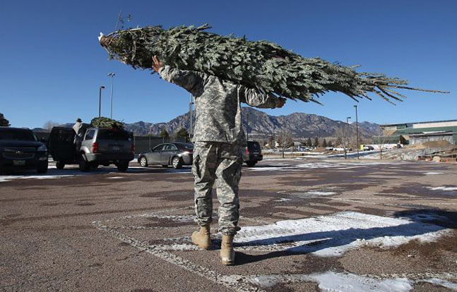 """New York Army National Guard Soldiers shipped Christmas trees to military families as part of the """"Trees for Troops"""" program."""