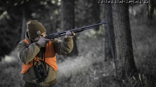 Designed by John Pederson to compete with the lever-action rifles so popular at the time, the pump-action Remington 141 Gamemaster, available in various calibers, never achieved the status of the lever gun. Nevertheless, it was a stalwart in the eastern woods as a deer and moose rifle.