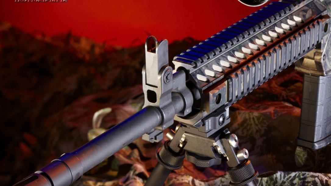 Top 10 ARs - Colt LE901 Front Sight