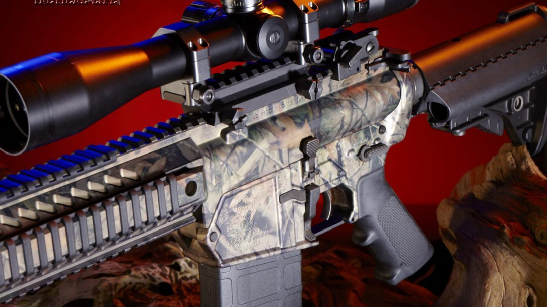 Top 10 ARs - Colt LE901 Left Side
