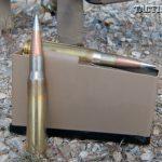 SIG50 Magazine and Ammo