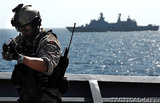 Danish Special Operations Combat Swimmers navy