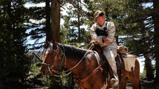 Marines horseback training