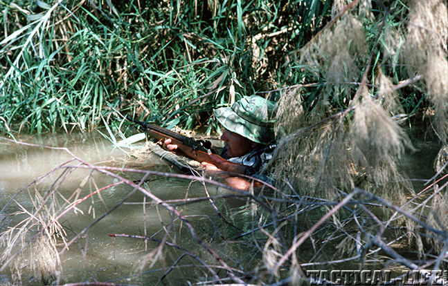 U.S. M14 Battle Rifle swamp