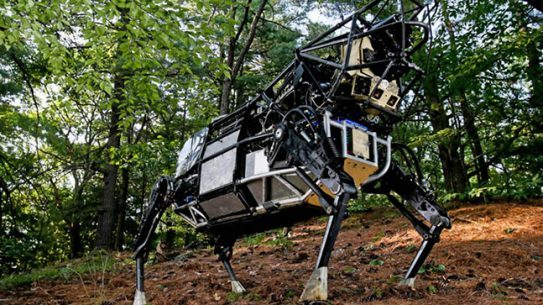 Legged Squad Support System cow Boston Dynamics