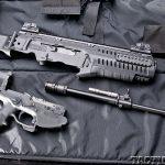 ARX100 Black Guns apart