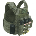 Shellback Tactical Banshee Rifle Plate Carrier green