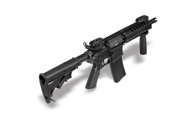 DMPS BG 2015 Personal Defense Weapon high right