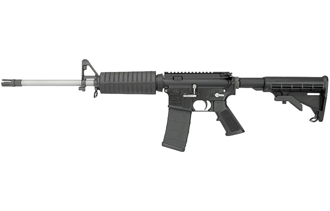 DS Arms ZM4 300 BLK evergreen