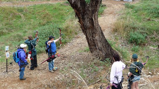 Women bowhunting archery DVD