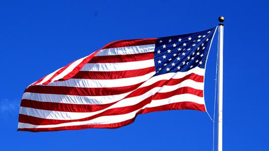 Veterans Day 2014 flag