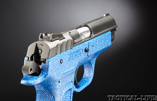 Top 18 Full-Size Guns 2014 EAA WITNESS PAVONA 9mm rear