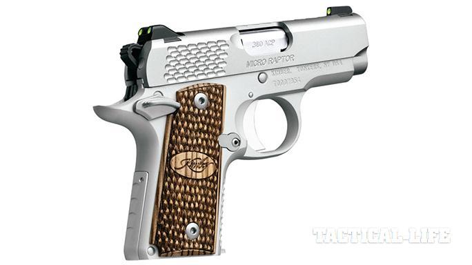 Compact Backup Handguns 2015 Kimber Micro Raptor .380