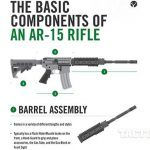 Stag Arms AR-15 infograph 1
