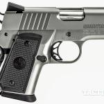 AHM 2015 Covert 1911 Para Warthog