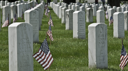 Flags In Ceremony 2015 Arlington National Cemetery
