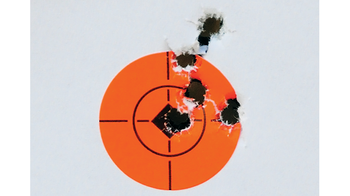 Walther HK G36 Replica Rifle Rimfires 2015 target