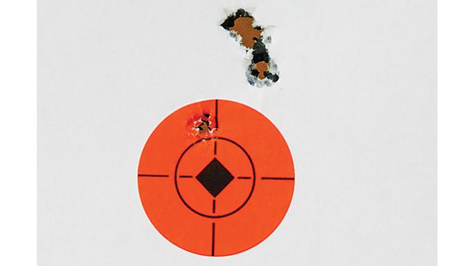 Walther HK G36 Replica Rifle Rimfires 2015 target miss
