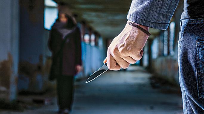 Ambush Killers knife LEO