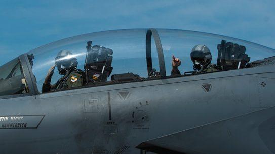 F-15E Strike Eagle Paul Hibbard