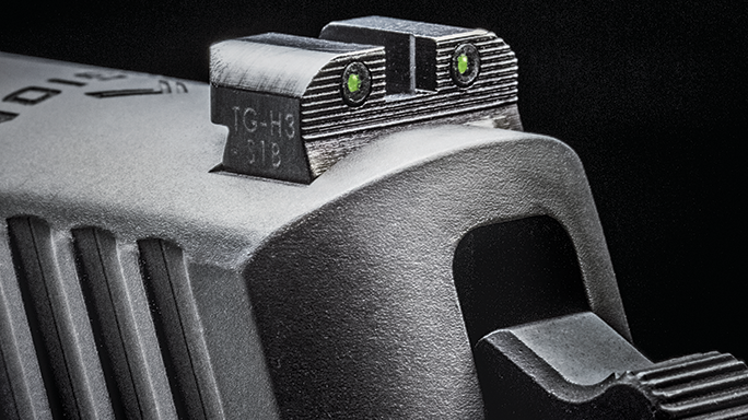 Special Weapons 2016 Sig Sauer Legion Series rear sight