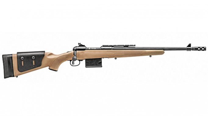 Best low caliber target rifle
