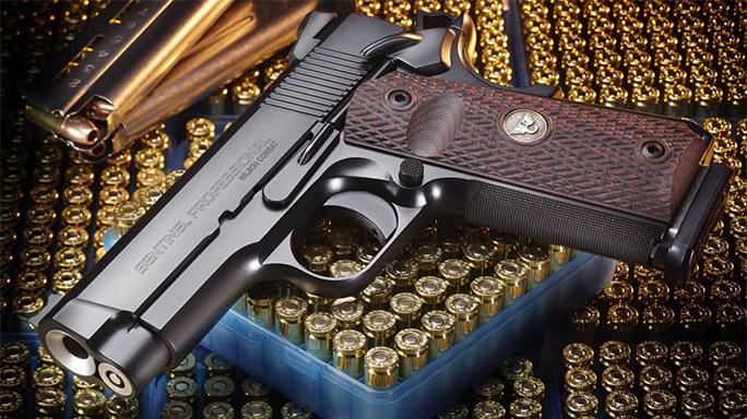 Wilson Combat Sentinel Professional Pistol new lead