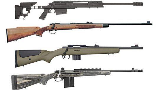 bolt-action rifles, bolt-action rifle, Bolt-action rifles