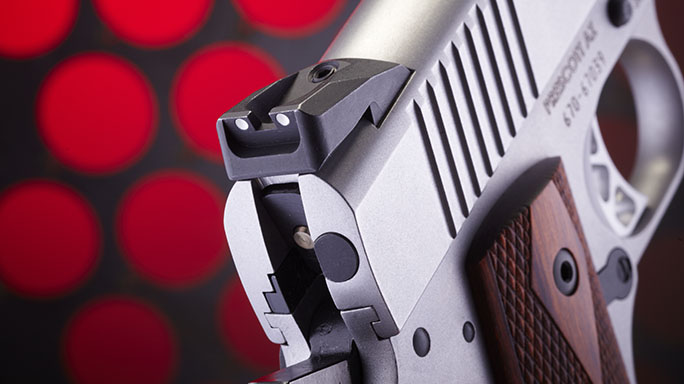 Ruger SR1911 .45 ACP Pistol Review rear sight