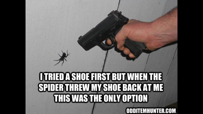 Gun Memes Spider