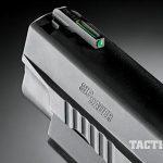 sig sauer, Sig Sauer P227 TacOps, p227 tacops, sig sauer pistol, sig sauer p227, truglo sight