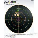smith & wesson, m&p bodyguard 380, m&p bodyguard 38, bodyguard 38, bodyguard 380, pistols, handguns, revolvers, revolver sight, crimson trace laser, gun test, target, gun target